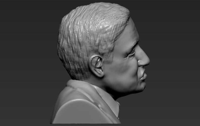 Stephen Hawking bust ready for full color 3D printing 3D Print 230653
