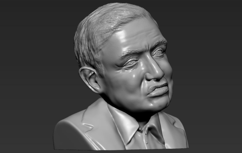 Stephen Hawking bust ready for full color 3D printing 3D Print 230654