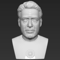 Small Tony Stark Robert Downey Jr Iron Man bust ready for 3D printing 3D Printing 230739