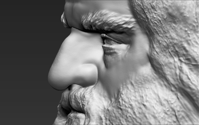 Gimli Lord of the Rings bust 3D printing ready stl obj 3D Print 231073