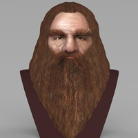 Small Gimli Lord of the Rings bust full color 3D printing ready 3D Printing 231077
