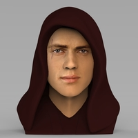 Small Anakin Skywalker Star Wars bust ready for full color 3D printing 3D Printing 231198