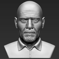 Small Walter White Breaking Bad bust 3D printing ready stl obj 3D Printing 231263