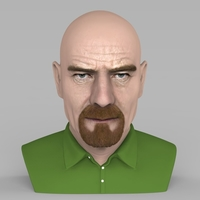 Small Walter White Breaking Bad bust ready for full color 3D printing 3D Printing 231278