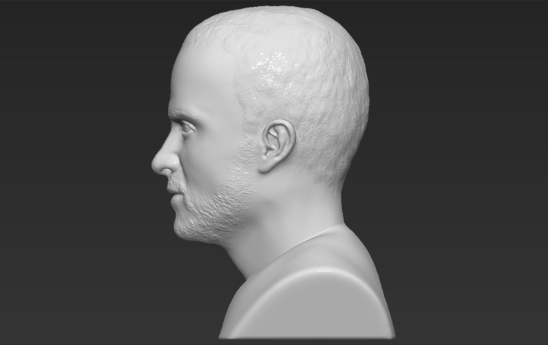 Jesse Pinkman Breaking Bad bust ready for full color 3D printing 3D Print 231352