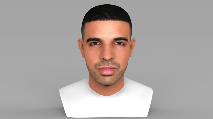 Drake bust ready for full color 3D printing 3D Print 231737