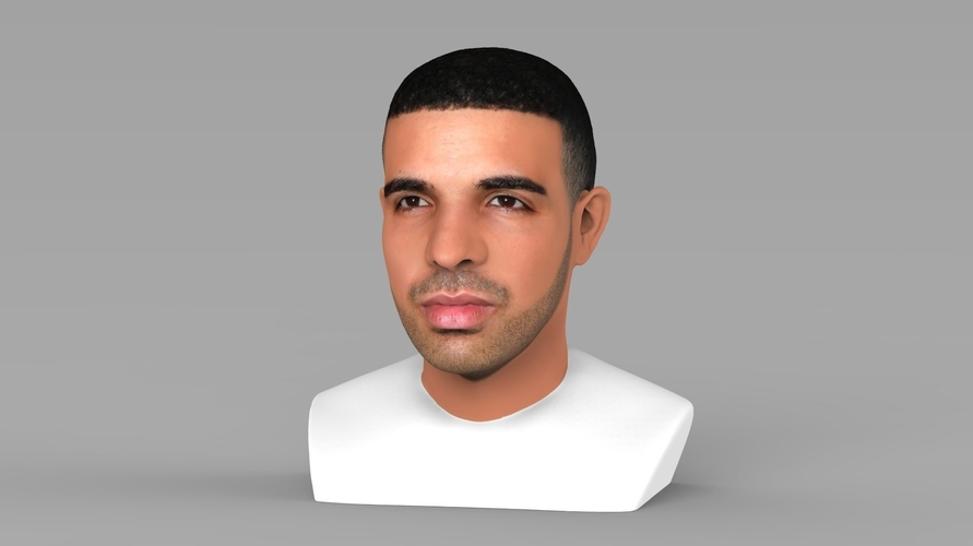Drake bust ready for full color 3D printing 3D Print 231738