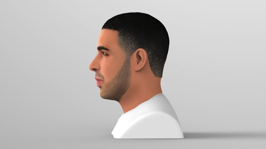 Drake bust ready for full color 3D printing 3D Print 231741