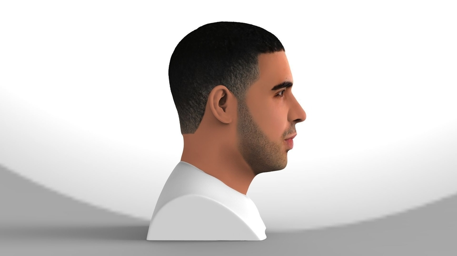 Drake bust ready for full color 3D printing 3D Print 231742
