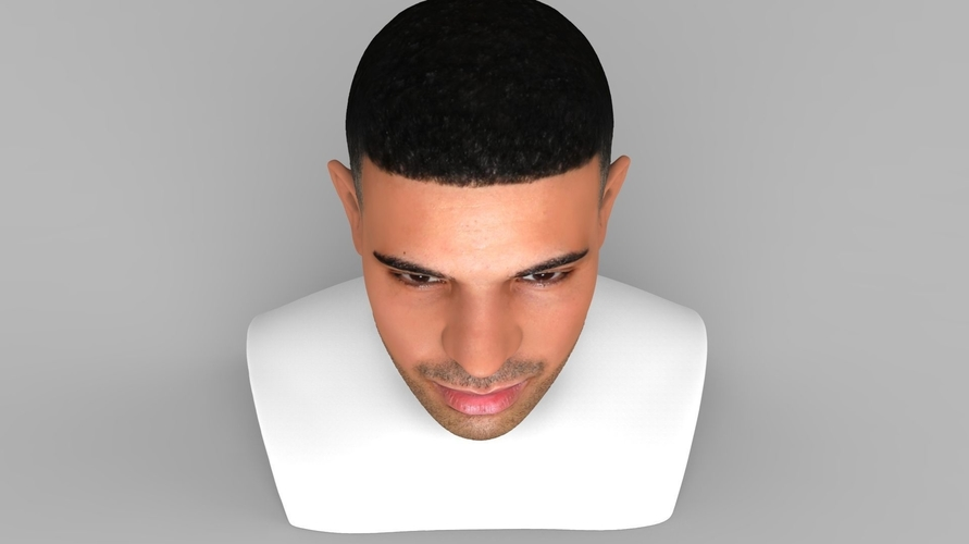 Drake bust ready for full color 3D printing 3D Print 231744