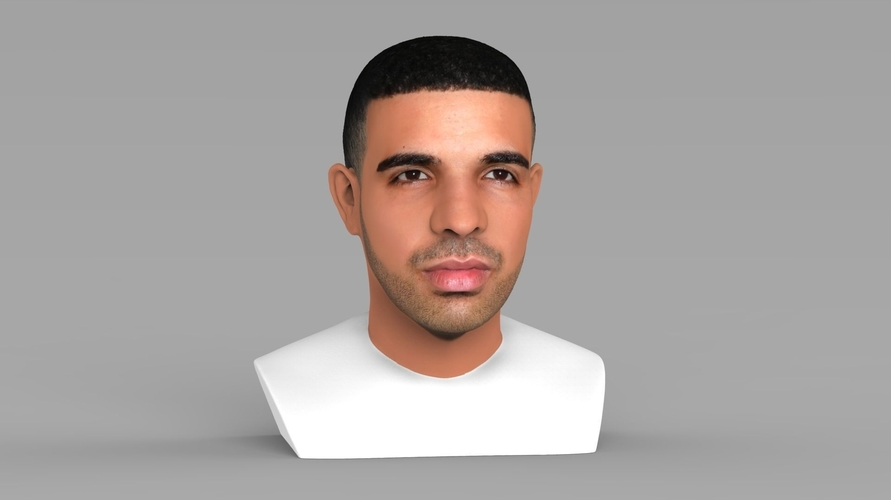 Drake bust ready for full color 3D printing 3D Print 231745