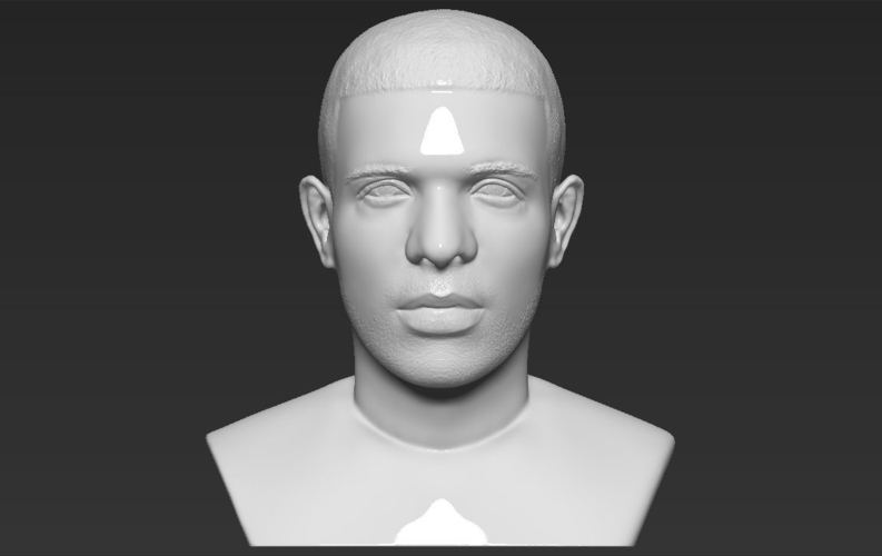 Drake bust ready for full color 3D printing 3D Print 231748