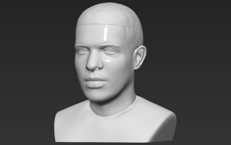 Drake bust ready for full color 3D printing 3D Print 231749