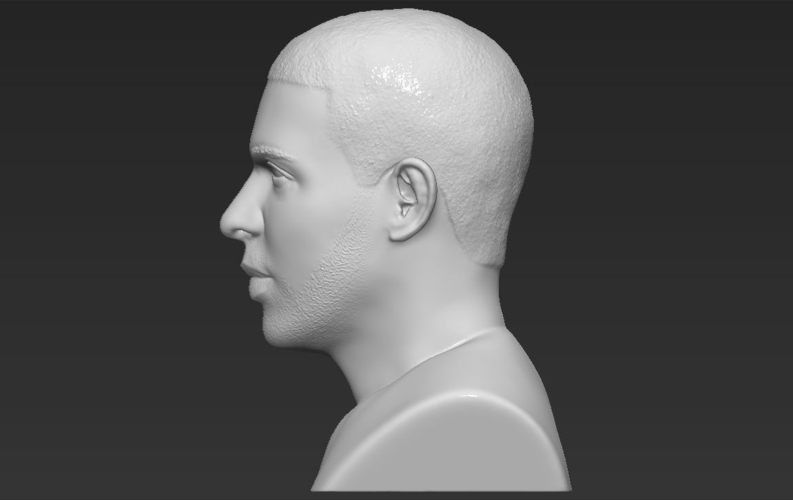 Drake bust ready for full color 3D printing 3D Print 231750