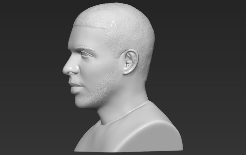 Drake bust ready for full color 3D printing 3D Print 231751
