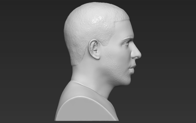 Drake bust ready for full color 3D printing 3D Print 231752