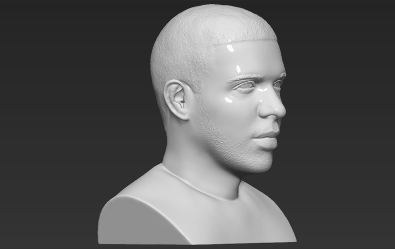 Drake bust ready for full color 3D printing 3D Print 231753