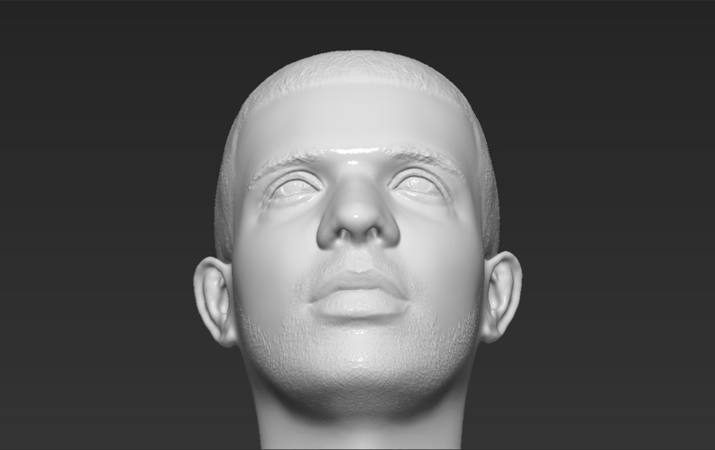 Drake bust ready for full color 3D printing 3D Print 231755