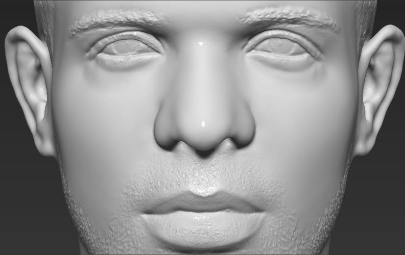 Drake bust ready for full color 3D printing 3D Print 231756