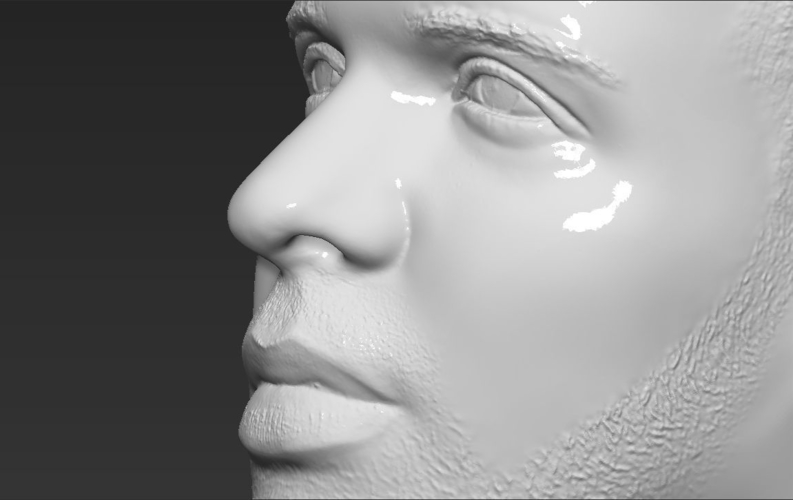 Drake bust ready for full color 3D printing 3D Print 231757
