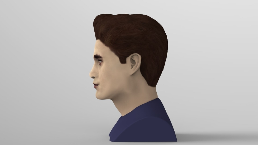 Edward Cullen Twilight Pattinson bust full color 3D printing 3D Print 231815