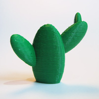 Small Support Free Cactus 3D Printing 23182