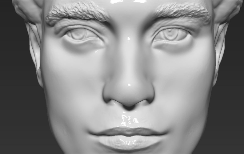Edward Cullen Twilight Pattinson bust full color 3D printing 3D Print 231832