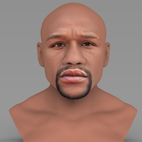 Small Floyd Mayweather bust ready for full color 3D printing 3D Printing 231852