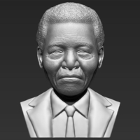Small Nelson Mandela bust 3D printing ready stl obj 3D Printing 232026