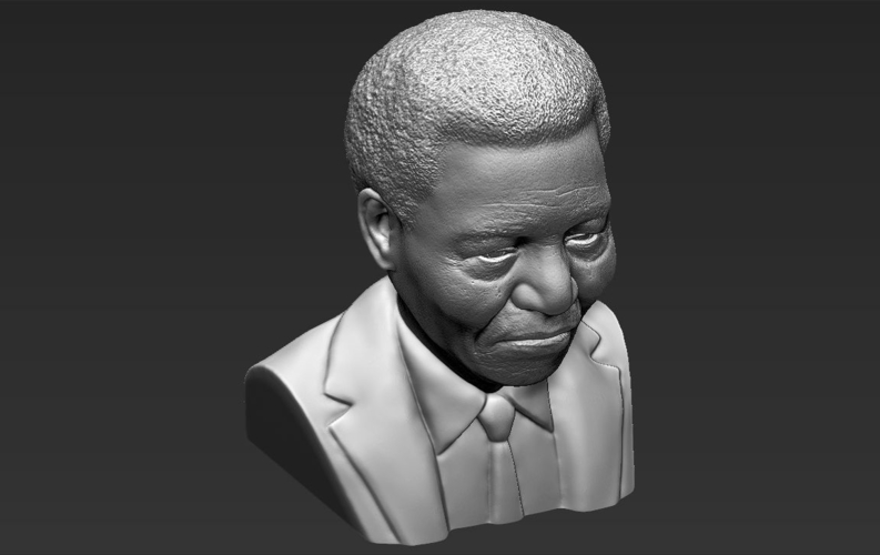 Nelson Mandela bust ready for full color 3D printing 3D Print 232062