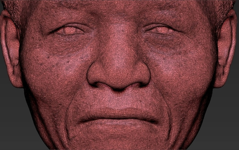 Nelson Mandela bust ready for full color 3D printing 3D Print 232064