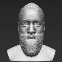 Small James Harden bust 3D printing ready stl obj 3D Printing 232470
