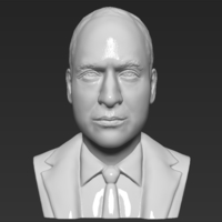 Small Prince William bust 3D printing ready stl obj 3D Printing 232719