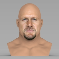 Small Stone Cold Steve Austin bust ready for full color 3D printing 3D Printing 232891