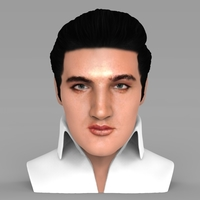 Small Elvis Presley bust ready for full color 3D printing 3D Printing 234364