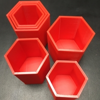 Small Concentric Hive Nesting Cups 3D Printing 235248