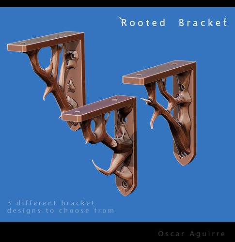 Rooted Brackets 3D Print 23644