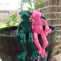 Small Froggy: the 3D printed ball-jointed frog doll 3D Printing 23697