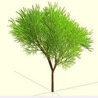Small Truly recursive and random Tree (Not just pseudo recursive) 3D Printing 23774