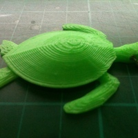 Small Sea Turtle Keychain 3D Printing 24186