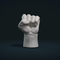 Small Fist Hand  3D Printing 242233
