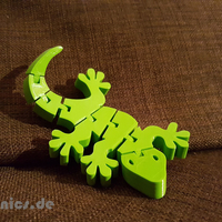 Small Flexi Articulated Gecko 3D Printing 244114