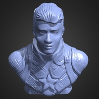 Small Captain America Bust 3D Printing 245297