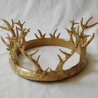 Small Antler Crown 3D Printing 245898