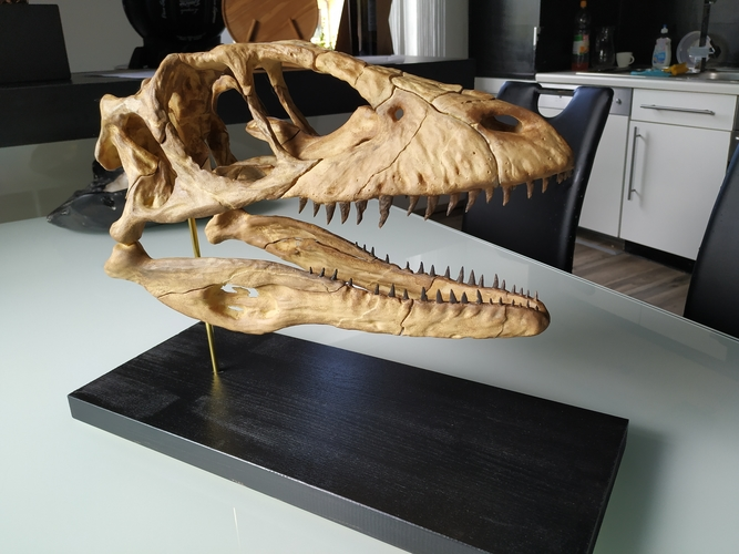 Deinonychus Skull (Part 1/2) 3D Print 246537