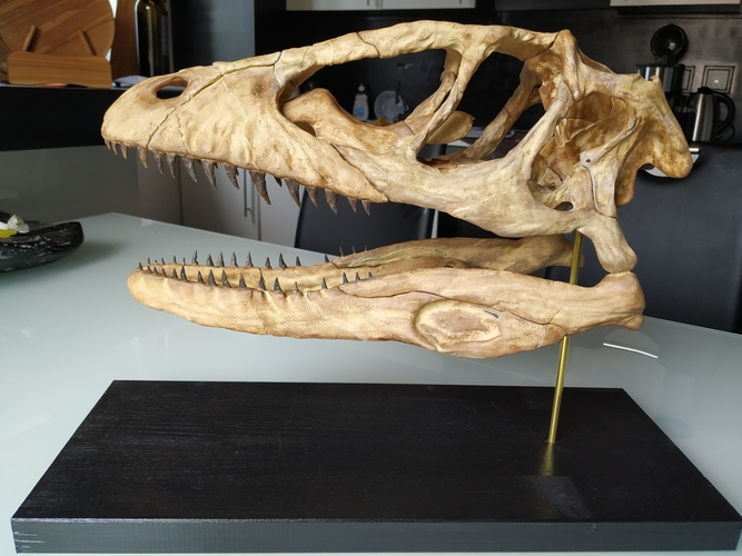 Deinonychus Skull (Part 1/2) 3D Print 246542
