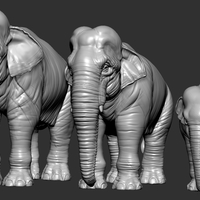 Small Elephant asian 3D Printing 246738