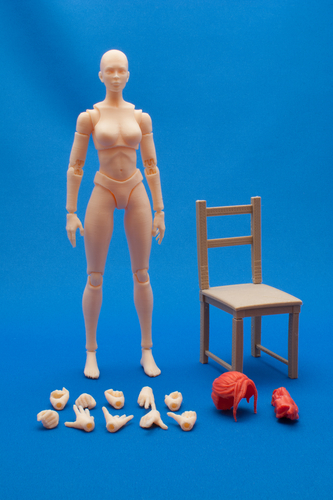 Articulated Poseable Female Figure 3D Print 247423