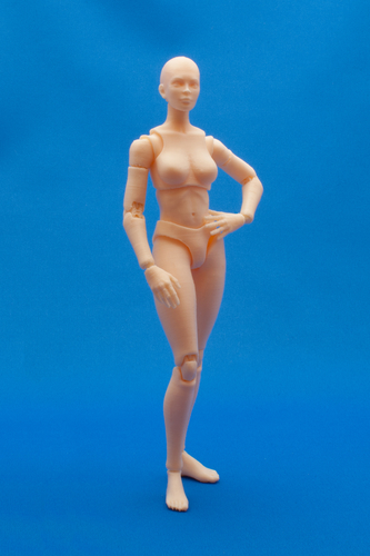 Articulated Poseable Female Figure 3D Print 247424