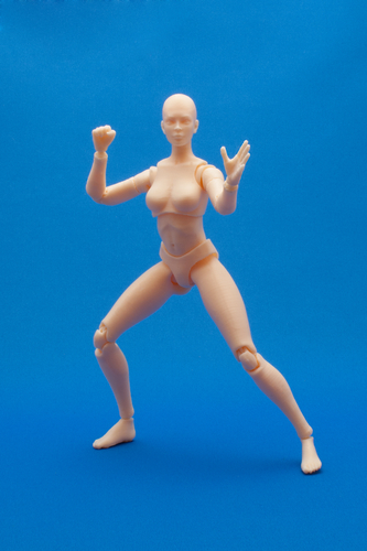 Articulated Poseable Female Figure 3D Print 247427